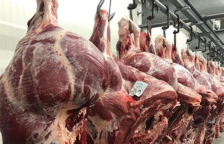 Vleesgroothandel Jos Leemput - Rundsvlees